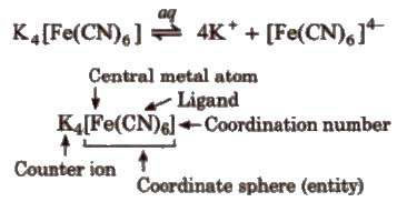 Coordination Compounds Ncert Solutions Pdf