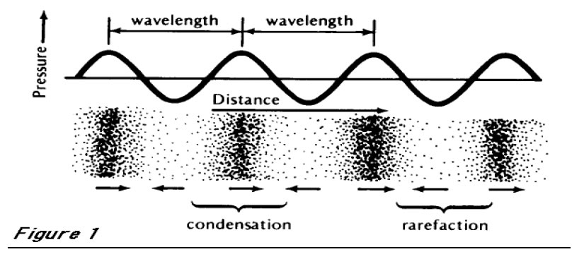 Frequency of sound wave
