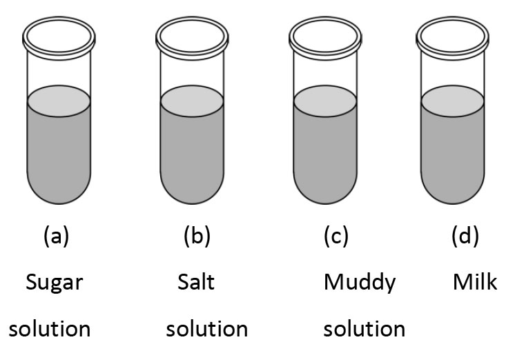 Pick out a colloid from the following