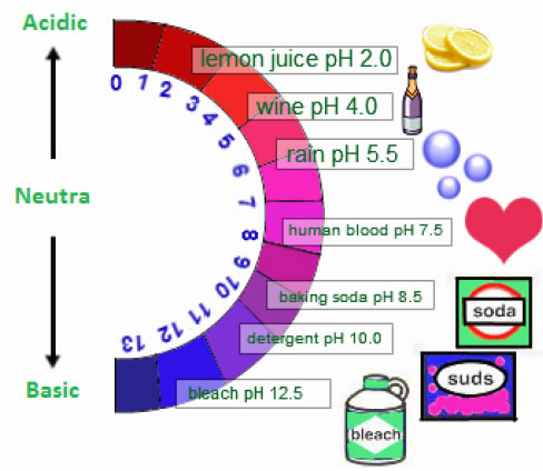 Range of pH is from 1 to 14